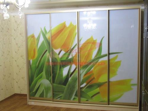 Зеркальный шкаф-купе с рисунком под заказ